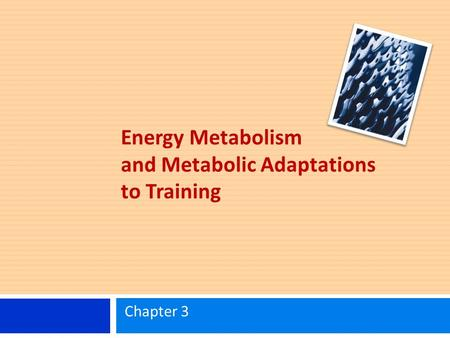 Energy Metabolism and Metabolic Adaptations to Training Chapter 3.