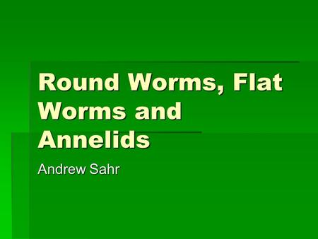Round Worms, Flat Worms and Annelids Andrew Sahr.