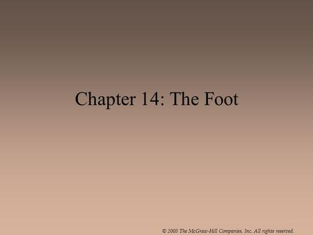 © 2005 The McGraw-Hill Companies, Inc. All rights reserved. Chapter 14: The Foot.
