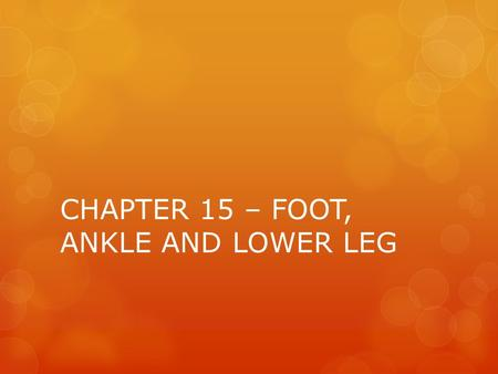 CHAPTER 15 – FOOT, ANKLE AND LOWER LEG. FOOT ANATOMY.