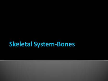  skeleton – the framework of connected bones in your body  bone – is an organ of the skeletal system that stores minerals  bone marrow – soft tissue.