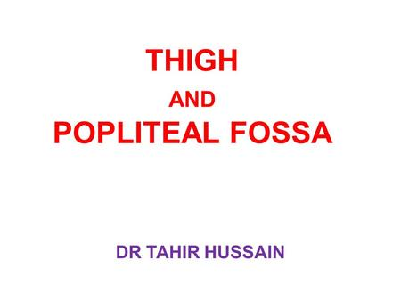 THIGH AND POPLITEAL FOSSA DR TAHIR HUSSAIN. OBJECTIVES Study the arrangement of the muscles of each compartment of the thigh and give their actions and.