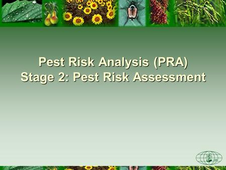 Pest Risk Analysis (PRA) Stage 2: Pest Risk Assessment.