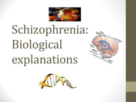 Schizophrenia: Biological explanations. Overview Genetic hypothesis Biochemical factors Neuroanatomical factors Prenatal exposure to virus.