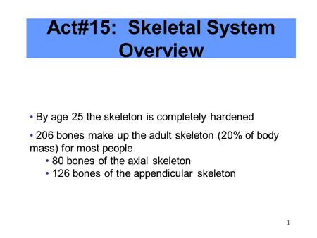 1 Act#15: Skeletal System Overview By age 25 the skeleton is completely hardened 206 bones make up the adult skeleton (20% of body mass) for most people.