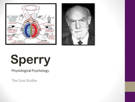 Sperry Physiological Psychology The Core Studies.