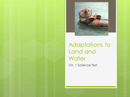 Adaptations to Land and Water Ch. 1 Science Test.