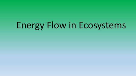 Energy Flow in Ecosystems. Interactions of Organisms and Their Environment Ecology :study of the interactions of living organisms with one another and.