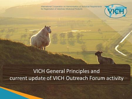 VICH General Principles and current update of VICH Outreach Forum activity 1.