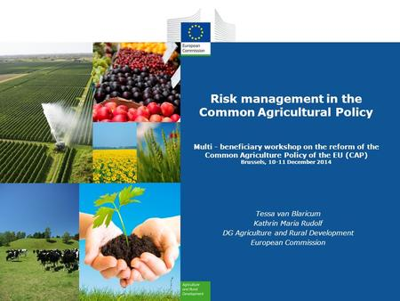 Risk management in the Common Agricultural Policy Multi - beneficiary workshop on the reform of the Common Agriculture Policy of the EU (CAP) Brussels,