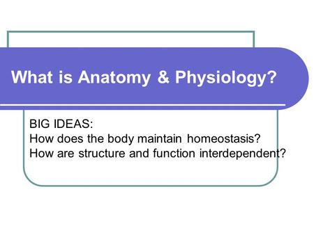 What is Anatomy & Physiology? BIG IDEAS: How does the body maintain homeostasis? How are structure and function interdependent?