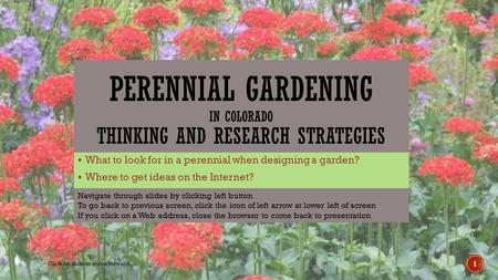  What to look for in a perennial when designing a garden?  Where to get ideas on the Internet? 1 Click on slide to move forward Navigate through slides.