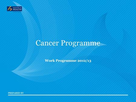 PREPARED BY Cancer Programme Work Programme 2012/13.