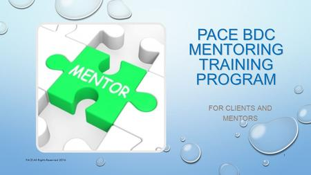 PACE BDC MENTORING TRAINING PROGRAM FOR CLIENTS AND MENTORS PACE All Rights Reserved 2016 1.