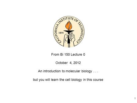 1 From Bi 150 Lecture 0 October 4, 2012 An introduction to molecular biology... but you will learn the cell biology in this course.