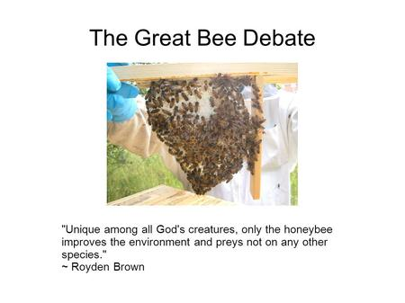The Great Bee Debate Unique among all God's creatures, only the honeybee improves the environment and preys not on any other species. ~ Royden Brown.