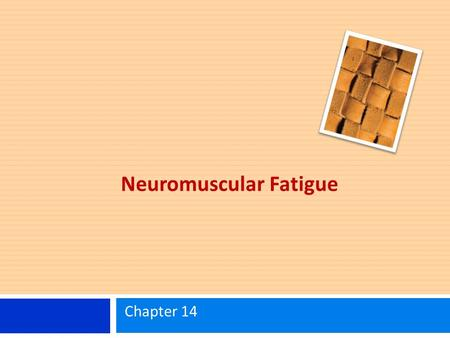 Neuromuscular Fatigue Chapter 14. Learning Objectives Be able to define neuromuscular fatigue. Understand basic concepts regarding the central and peripheral.