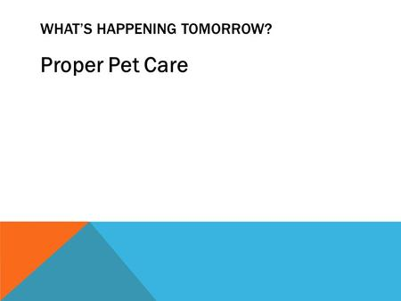 WHAT'S HAPPENING TOMORROW? Proper Pet Care. DOG CARE PRACTICES Types of Food Dry Semi-moist Canned.