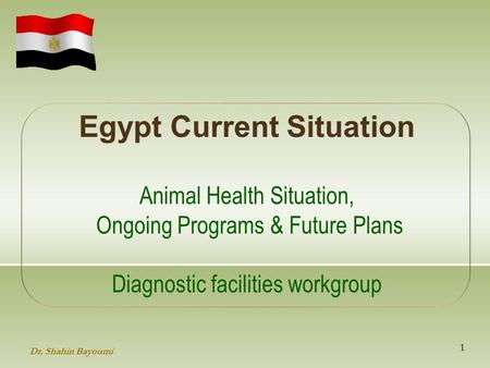 Egypt Current Situation Animal Health Situation, Ongoing Programs & Future Plans Diagnostic facilities workgroup 1 Dr. Shahin Bayoumi.