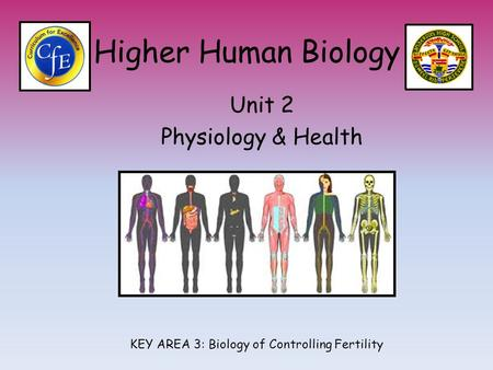 Higher Human Biology Unit 2 Physiology & Health KEY AREA 3: Biology of Controlling Fertility.
