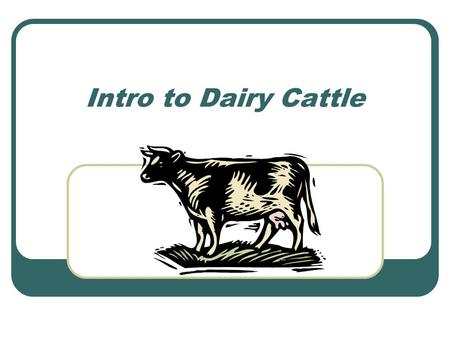 Intro to Dairy Cattle. Objectives…Lingo Describe terms commonly used with dairy cattle. Identify six major breeds of dairy cattle.