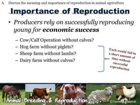 Importance of Reproduction Producers rely on successfully reproducing young for economic success – Cow/Calf Operation without calves? – Hog farm without.