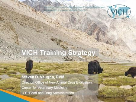 VICH Training Strategy Steven D. Vaughn, DVM Director, Office of New Animal Drug Evaluation, Center for Veterinary Medicine U.S. Food and Drug Administration.