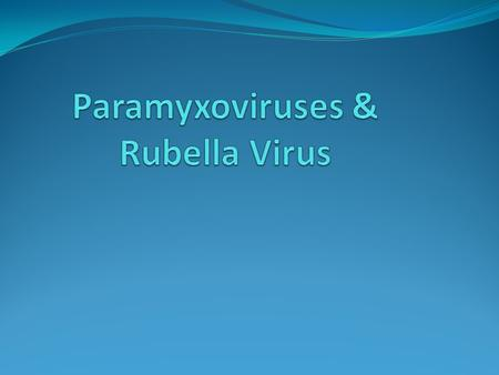 The paramyxoviruses include the most important agents of respiratory infections of infants and young children (respiratory syncytial virus and the parainfluenza.