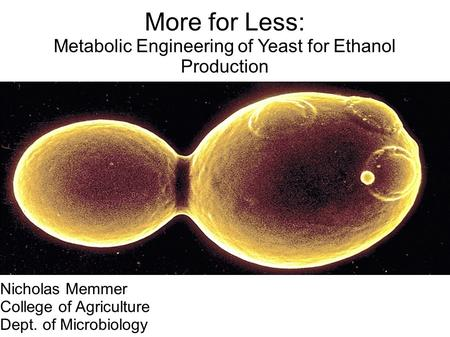 More for Less: Metabolic Engineering of Yeast for Ethanol Production Nicholas Memmer College of Agriculture Dept. of Microbiology.