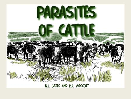 Parasites Of Cattle By: James Draine Sheridan College Research Project This research had two objectives: 1.Determine which parasites were most detrimental.