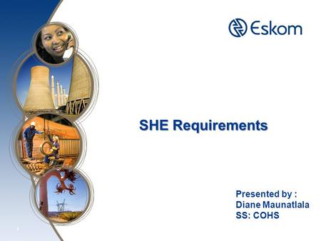 1 SHE Requirements Presented by : Diane Maunatlala SS: COHS.