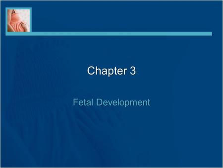 Chapter 3 Fetal Development. Cell Division Mitosis –Continuous process –Body grows, develops, and dead cells are replaced –Each daughter cell contains.