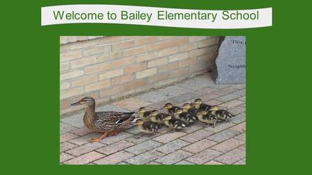 Welcome to Bailey Elementary School Intro Slide. Bailey Administrative Staff Mr. Tyler Wolfe Principal Mrs. Monica Campana Administrative Intern Miss.