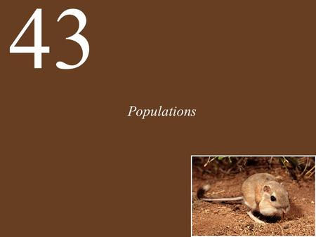 Populations 43. Chapter 43 Populations Key Concepts Populations Are Patchy in Space and Dynamic over Time Births Increase and Deaths Decrease Population.