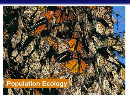 AP Biology Population Ecology. AP Biology Life takes place in populations  Population  group of individuals of same species in same area at same time.