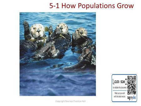 Copyright Pearson Prentice Hall 5-1 How Populations Grow.