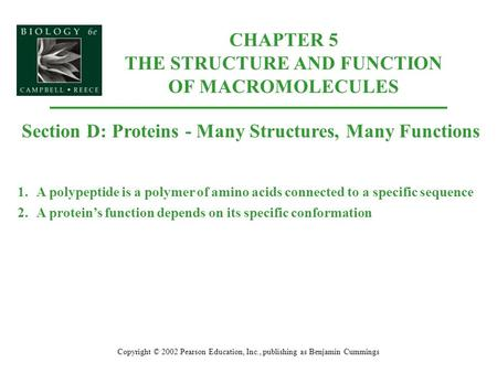 CHAPTER 5 THE STRUCTURE AND FUNCTION OF MACROMOLECULES Copyright © 2002 Pearson Education, Inc., publishing as Benjamin Cummings Section D: Proteins -