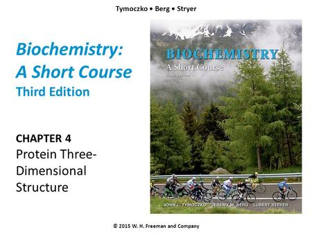 Biochemistry: A Short Course Third Edition CHAPTER 4 Protein Three- Dimensional Structure © 2015 W. H. Freeman and Company Tymoczko Berg Stryer.