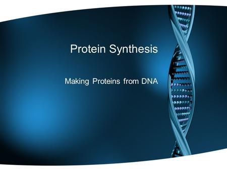Protein Synthesis Making Proteins from DNA. DNA & the Nucleus DNA cannot leave the nucleus! So how can we get the information for making proteins out.