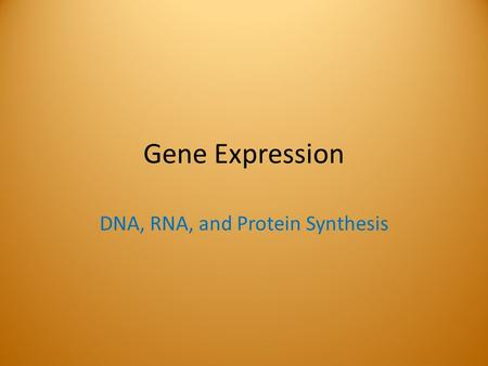 Gene Expression DNA, RNA, and Protein Synthesis. Gene Expression Genes contain messages that determine traits. The process of expressing those genes includes.