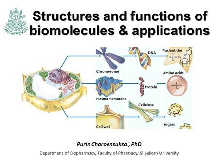 Structures and functions of biomolecules & applications Purin Charoensuksai, PhD Department of Biopharmacy, Faculty of Pharmacy, Silpakorn University.