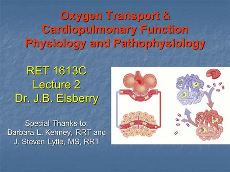 Oxygen Transport & Cardiopulmonary Function Physiology and Pathophysiology RET 1613C Lecture 2 Dr. J.B. Elsberry Special Thanks to: Barbara L. Kenney,
