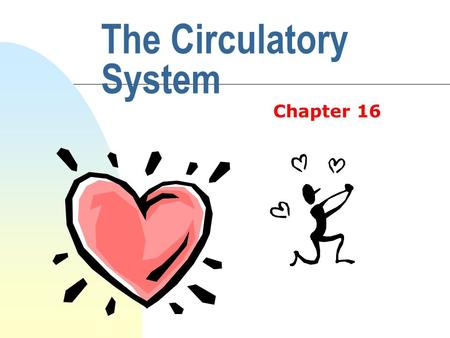 The Circulatory System Chapter 16 n Right side of the heart n Lungs (here it gets oxygen) n Left side of the heart n Body (here it drops off the oxygen)