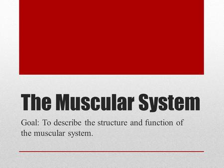 The Muscular System Goal: To describe the structure and function of the muscular system.