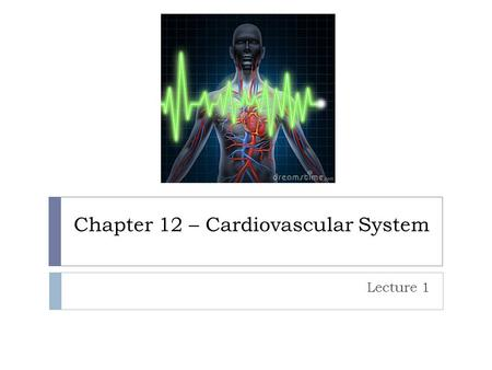 Chapter 12 – Cardiovascular System Lecture 1. Intro  Cardiovascular System has three types of blood vessels 1. Arteries 2. Capillaries 3. Veins.