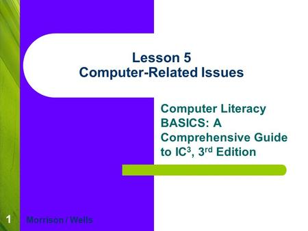 1 Lesson 5 Computer-Related Issues Computer Literacy BASICS: A Comprehensive Guide to IC 3, 3 rd Edition Morrison / Wells.