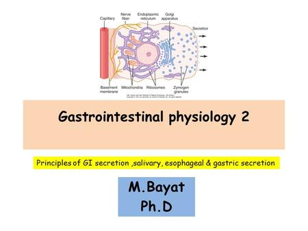 Gastrointestinal physiology 2 M.Bayat Ph.D Principles of GI secretion,salivary, esophageal & gastric secretion.