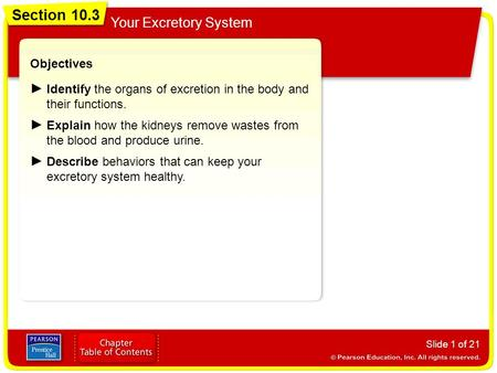 Section 10.3 Your Excretory System Slide 1 of 21 Objectives Identify the organs of excretion in the body and their functions. Explain how the kidneys remove.
