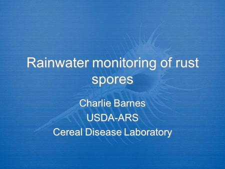 Rainwater monitoring of rust spores Charlie Barnes USDA-ARS Cereal Disease Laboratory Charlie Barnes USDA-ARS Cereal Disease Laboratory.