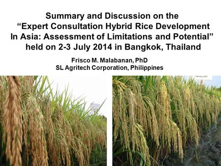 "Summary and Discussion on the ""Expert Consultation Hybrid Rice Development In Asia: Assessment of Limitations and Potential"" held on 2-3 July 2014 in Bangkok,"